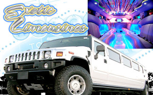 Exotic Limousines